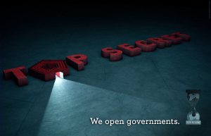 We Open Governments.